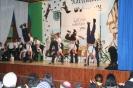 Narrentreffen 2008